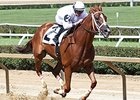 Champ Work All Week Takes Mountaineer Stakes