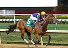 Super Majesty Holds On for Dogwood Win