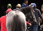 Keeneland September Yearling Sale Recap