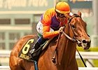Featured Horse Profile: Beholder
