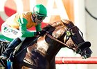 Om Speedy Favorite in Twilight Derby