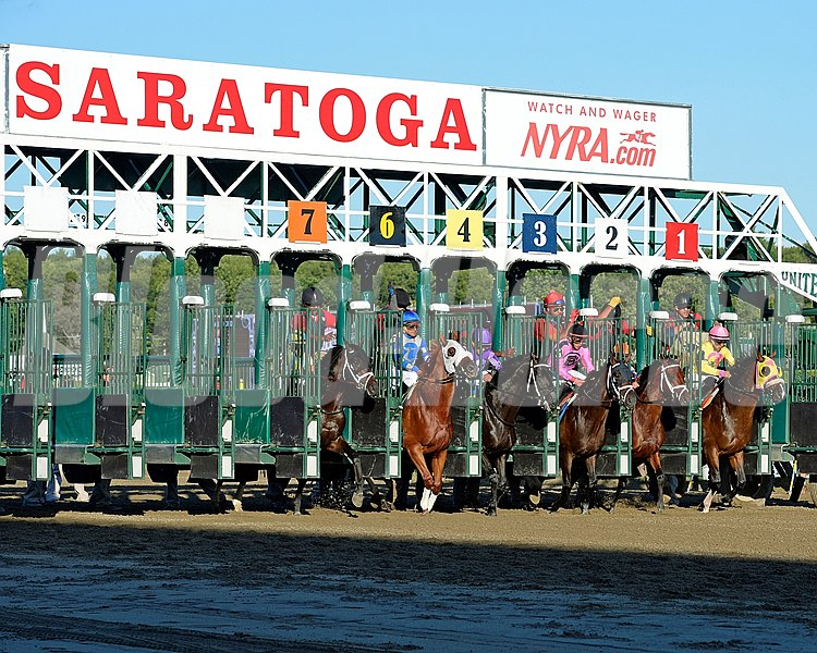 Start of the 2015 Albany Stakes at Saratoga.