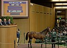 Shadwell Lands War Front Filly for $1.45M