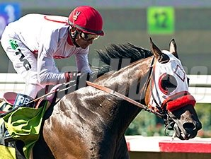 Big Macher wins the Pirate's Bounty Stakes.