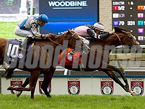 Mondialiste wins the Woodbine Mile.