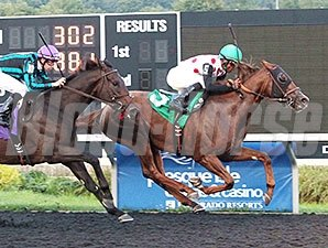 Florida Won wins the Presque Isle Mile.