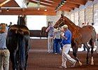 Keeneland September Sale Ends Similar to 2014