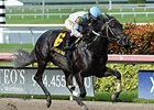 Florida Sire Stakes Series Continues Sept. 5