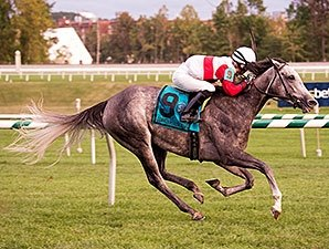 Onus Kicks Away to Commonwealth Oaks Victory