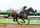 Tiger Ride Prevails in Valley View Stakes