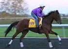 Breeders' Cup News Update for Oct. 29, 2015