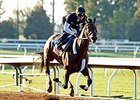Runhappy Zips Six Furlongs at Keeneland