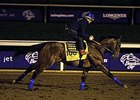 American Pharoah Goes to Main Track