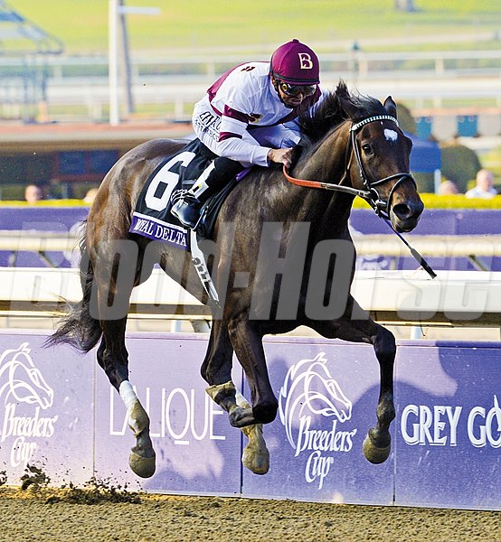 Royal Delta wins the Breeders' Cup Ladies' Classic (gr. 1)