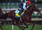 American Pharoah Speedy in Santa Anita Drill