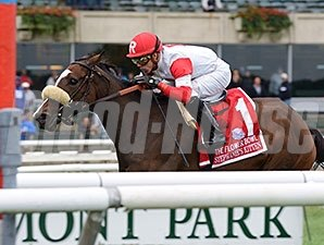 Stephanie's Kitten wins the 2015 Flower Bowl.