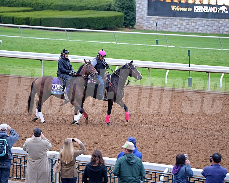 Caption: Lava Man ponies Ralis on the track. 