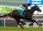Curvy Hits Pay Dirt in E.P. Taylor Stakes