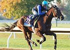 BC Juvenile Contenders Work at Keeneland