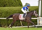 Tepin Airs in First Lady, BC Mile Next