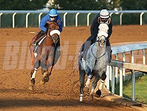 Salama (back) and Lurego (front) - Keeneland, October 22, 2015.