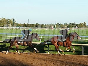 Cocked and Loaded (back) and Lewys Vaporizer (front) - Keeneland, October 14, 2015.