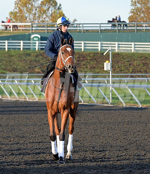 Caption: The Pizza Man