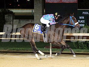 Greenway Court wins the 2015 WV Dash for Cash Breeders' Classic Stakes.