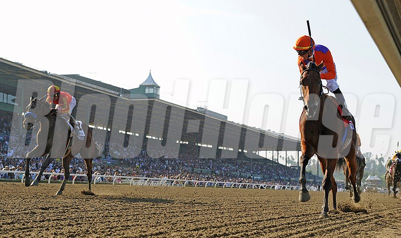 Beholder Profile News Entries Results Video And Blogs