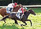 Illuminate, Harmonize to Meet in Fillies Turf