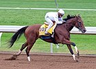 Beholder Getting Ready for 6-Year-Old Season