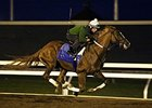 Tapiture, Holy Boss in Breeders' Cup Works