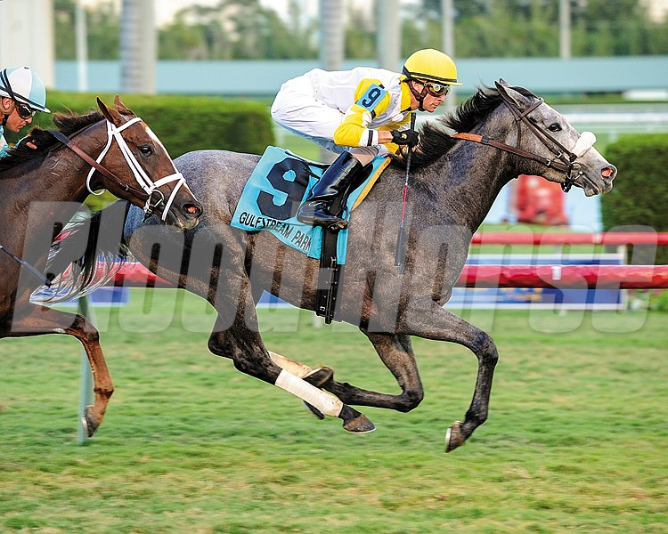 Hard Not To Like captures the Marshua's River Stakes (gr. 3) at Gulfstream Park.