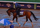 Another Wet Day for Breeders' Cup Hopefuls