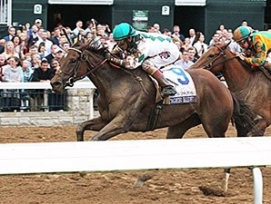 Older Fillies and Mares to Contest Gallorette