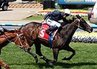 Racing Australia Defends New Whip Rule