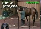 Keeneland November: Don't Tell Sophia - Hip 41