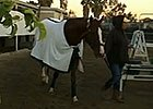 California Chrome & Art Sherman at Los Alamitos