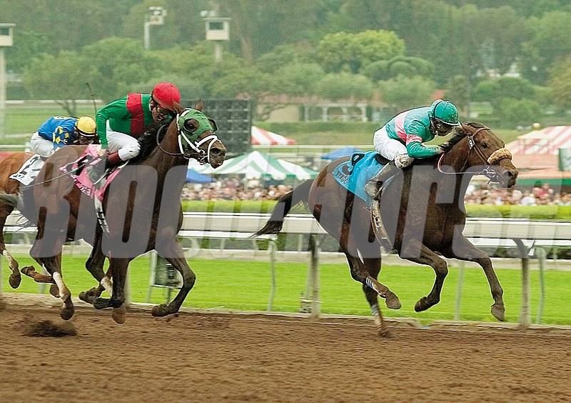 Jerry and Ann Moss' Tiago and Mike Smith, right, draw away from King of the Roxy (Richard Migliore up), to win the Grade I $750,000 Santa Anita Derby Saturday, April 7, 2007 at Santa Anita Park.
