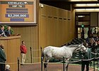 $2.2 Million for Millionaire Hard Not to Like