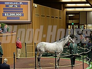 Grade I-winning Hard Spun mare Hard Not to Like tops Keeneland November's opening session at $2.2 million