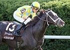 Airoforce Tries Dirt in Kentucky Jockey Club