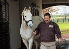 Tapit Leads by 2015 Book Quality