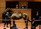 Aubby K, In Foal to Tapit, Brings $2.4M
