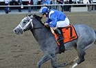 Mohaymen Sharp in Half-Mile Work