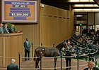 War Front Filly Brings Record $3.2 Million