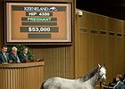 Keeneland: Average, Gross Up, Median Declines