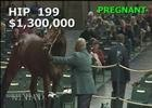 Keeneland November: Spring in the Air - Hip 199