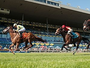 Records, Handle Growth for Woodbine in 2015