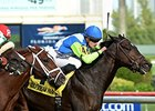 Solemn Tribute Takes Tropical Park Derby